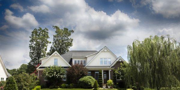 Urejanje okolice hiše zavzema tudi celotno oskrbo naših zelenih površin